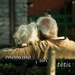 Veltījums vecākiem un vecvecākiem 17