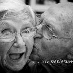 Veltījums vecākiem un vecvecākiem 4
