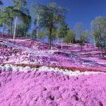 20 vietas uz Zemes, kur Daba nav skopojusies ar krāsām 4