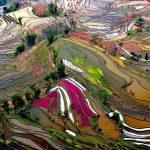 20 vietas uz Zemes, kur Daba nav skopojusies ar krāsām 6
