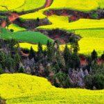 20 vietas uz Zemes, kur Daba nav skopojusies ar krāsām 18