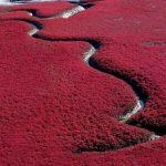 20 vietas uz Zemes, kur Daba nav skopojusies ar krāsām 11