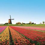 20 vietas uz Zemes, kur Daba nav skopojusies ar krāsām 12
