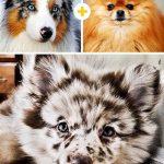 15 amizanti suņuki, kuri radušies pēc negaidītas sapārošanās 2