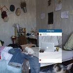 Kādu patiesību slēpj Instagram fotogrāfijas? Akmens populārā saita dārziņā 2