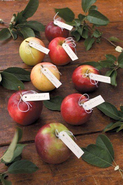 Pilna māja ar āboliem jeb 30 idejas, ko ar tiem iesākt 28
