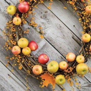 Pilna māja ar āboliem jeb 30 idejas, ko ar tiem iesākt 1