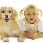 Bilžu galerija, kas apliecina, ka suņi patiešām līdzinās saviem saimniekiem 7