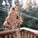 Pagatavojiet kopā ar bērniem ziemas cienastu putniņiem 12