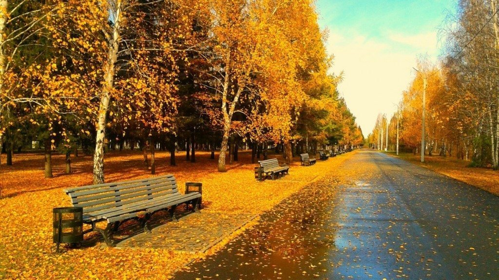 autumn-wallpaper-hd_063026944_28