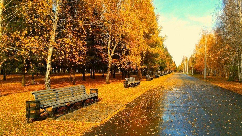 autumn-wallpaper-hd_063026944_28