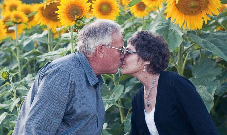 Savas sievas piemiņai vīrs iestādīja 160 hektārus ar saulespuķēm 1