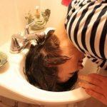 25 matu sakārtojuma viltības dažu minūšu laikā 10