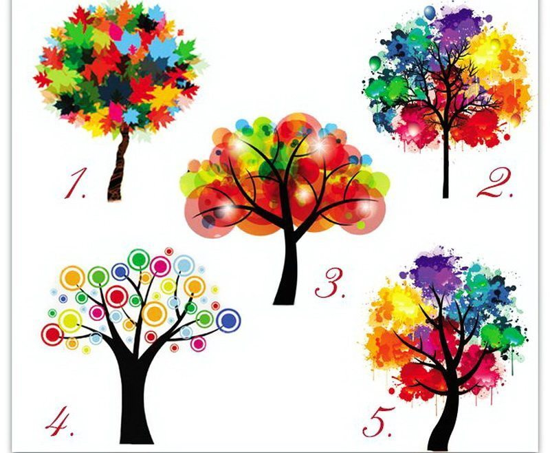 Izpildi testu! Izvēlies koku un uzzini par sevi kaut ko interesantu 2