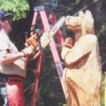 Varas iestādes pieprasīja nocirst veco koku, kā rīkojās šī sieviete? 3
