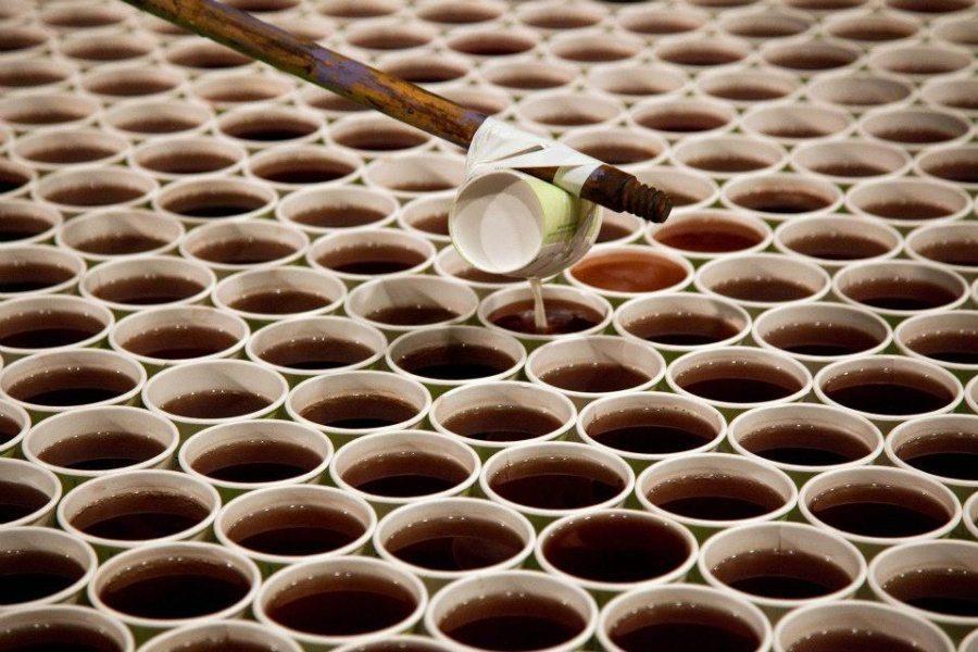 Mākslinieks ir izveidojis instalāciju no 66000 glāzēm lietus ūdens (+video) 3