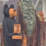 Varas iestādes pieprasīja nocirst veco koku, kā rīkojās šī sieviete? 4