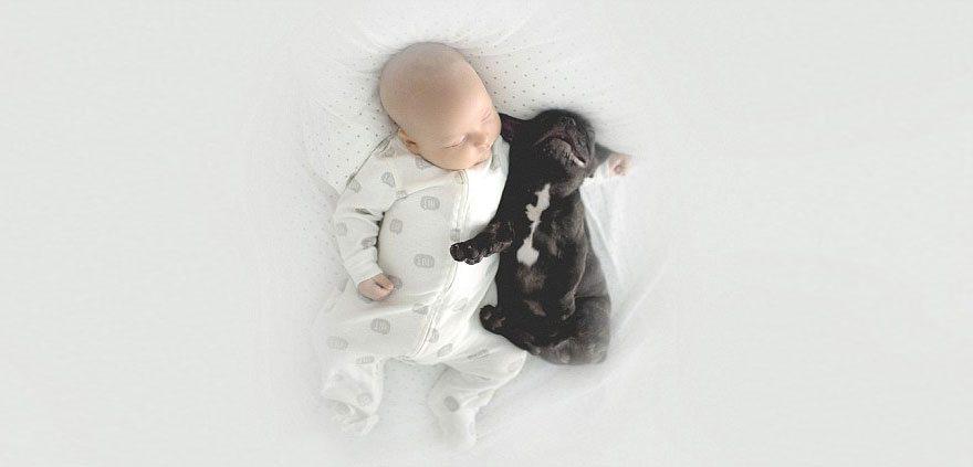 Mazulis un kucēns piedzima vienā dienā un tagad viņi domā, ka ir brāļi 10