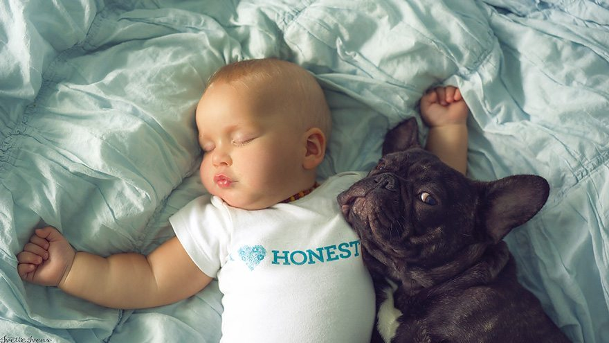 Mazulis un kucēns piedzima vienā dienā un tagad viņi domā, ka ir brāļi 6