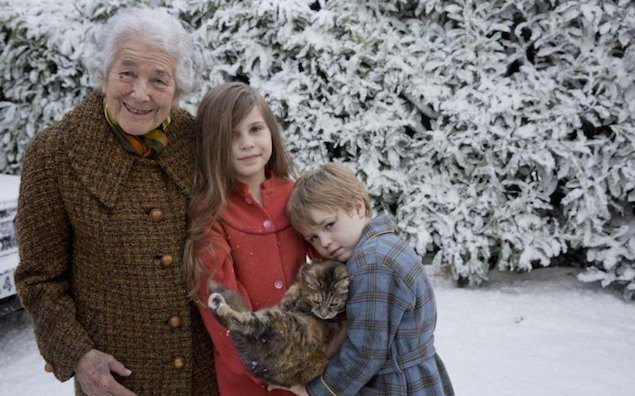 Video Ziemassvētku noskaņā par neveiklo kaķi ir kļuvis par interneta hītu