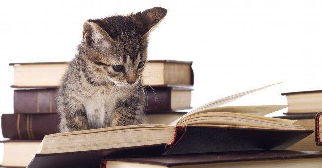 catver