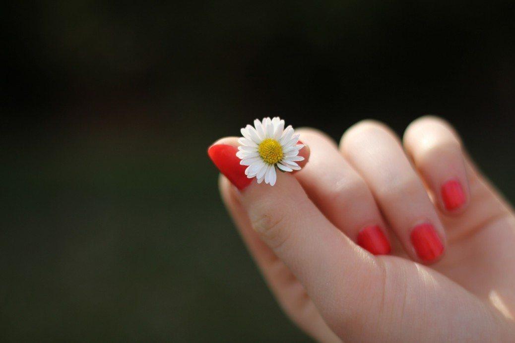 ziedins