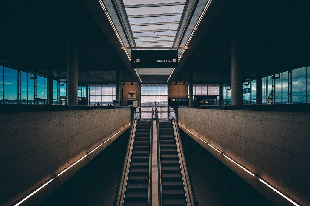 terminalis